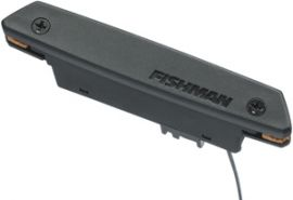 Fishman RareEarth - Active Soundhole Pickup - Humbucking