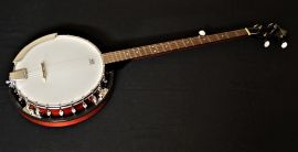Delta Blue DBJ25 Closed back banjo (second)