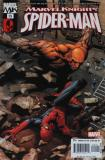 Marvel Knights Spiderman (#15)