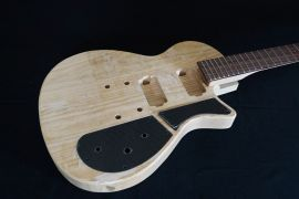 Electric Body and Neck + pickups