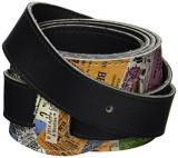 The Beatles Guitar Strap - Ticket Logo